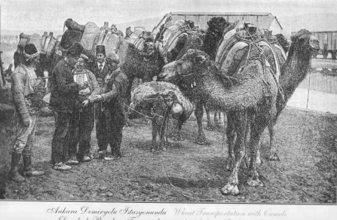 MUDÂREBE (Emek-Sermaye İş Ortaklığı)